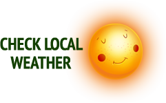 Check Local Weather
